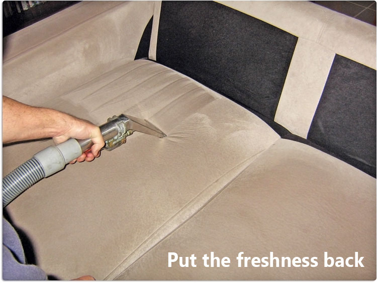 Germs Free Upholstery Kingsford