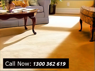 Carpet Cleaning Linden