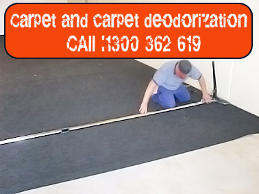 Carpet Mold Cleaning Bungarribee
