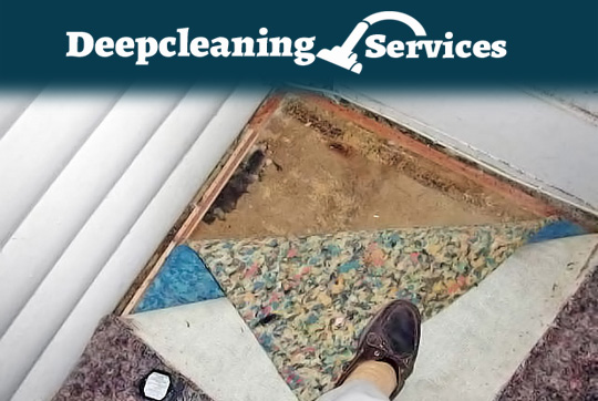 Guaranteed Carpet Repairing Pheasants Nest