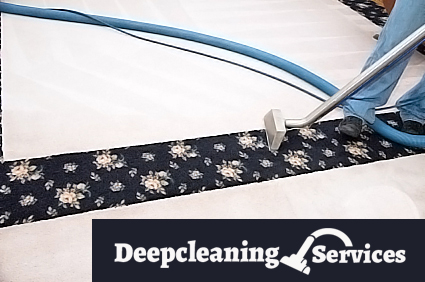 Certified Carpet Drying Chippendale