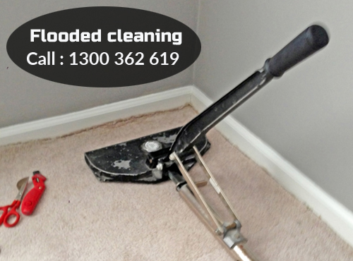 Carpet Flood Water Damage Blackett